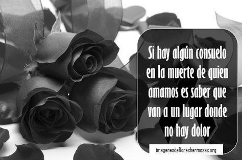 Rosas Negras Con Frases De Luto Frases Pinterest Frases Rosas