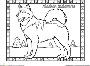 Alaskan Malamute Coloring Page Coloring Pages Dog Coloring Page Horse Coloring Pages