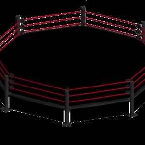 Octagon Ring Octagon Rings Wrestling Ring