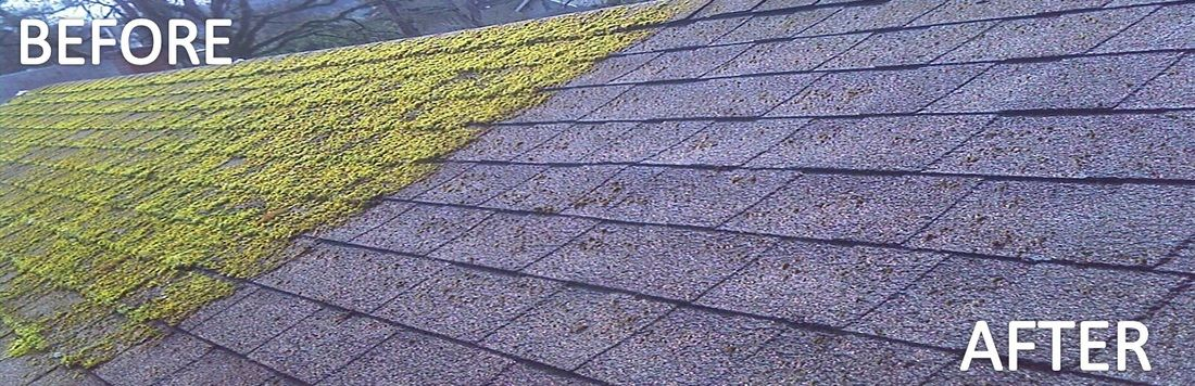 How To Remove Moss From Roof in 2020 Roof cleaning, Roof