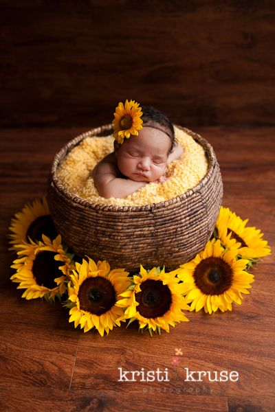 A sweet idea for a fall newborn photo togally newborn courtesy of kristi kruse newborn sunflower picture