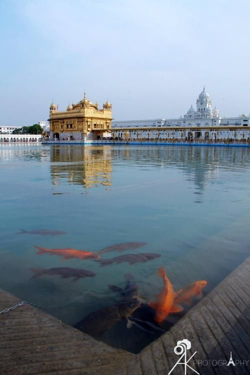 Amritsar In Punjab Holy City Of Sikhs Golden Temple Jallianwala Bagh Wagah Border Durgaina Temple Best Dhabas To Eat In A Wagah Golden Temple Amritsar