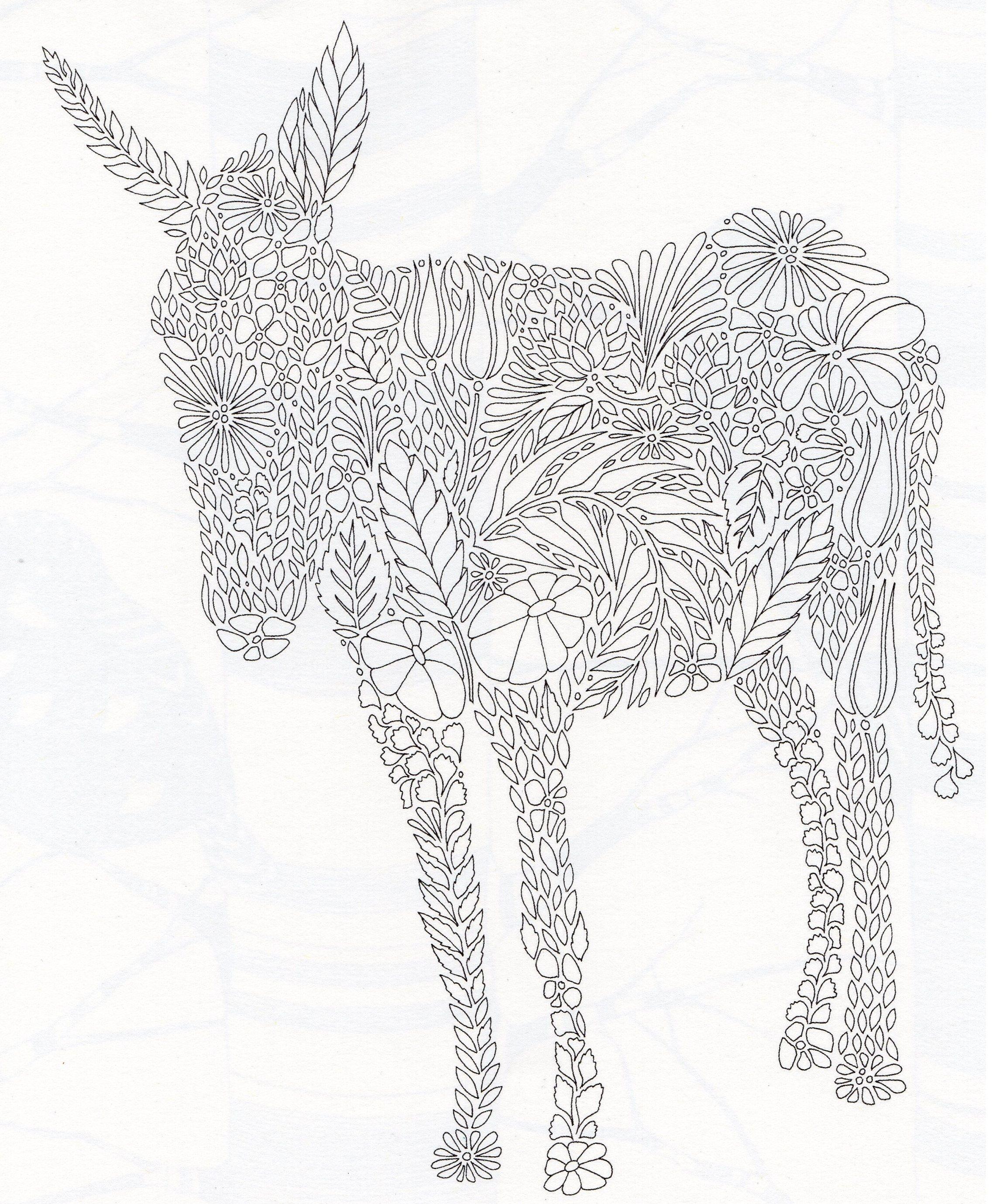 Millie Marottas Animal Kingdom Donkey
