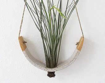 Hanging Air Plant Cradle tm Natural White Earthenware by mudpuppy