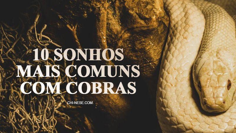 10 Sonhos Mais Comuns Com Cobras O Que Significa Sonhar Com