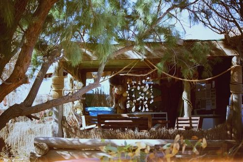 beachcomber: beach shack