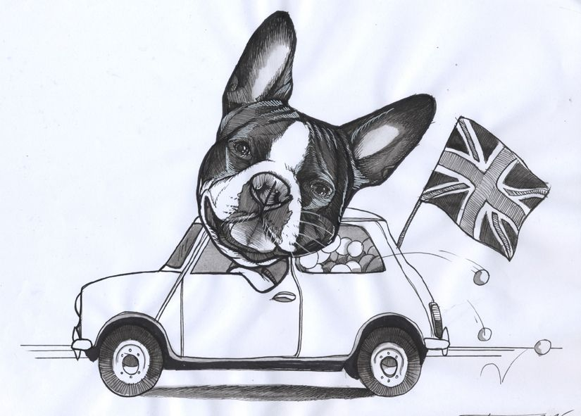 Sketchbook Page By Jeroen Teunen The Dog Painter Dog Driving Mini Car Union Jack God Save The Queen