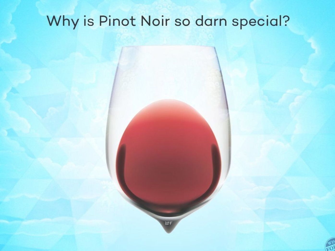 Why Is Pinot Noir So Darn Special Pinot Noir Is The 10th Most Planted Grape Variety In The World Let S Take A Look At 5 Facts On P Wine Folly Pinot