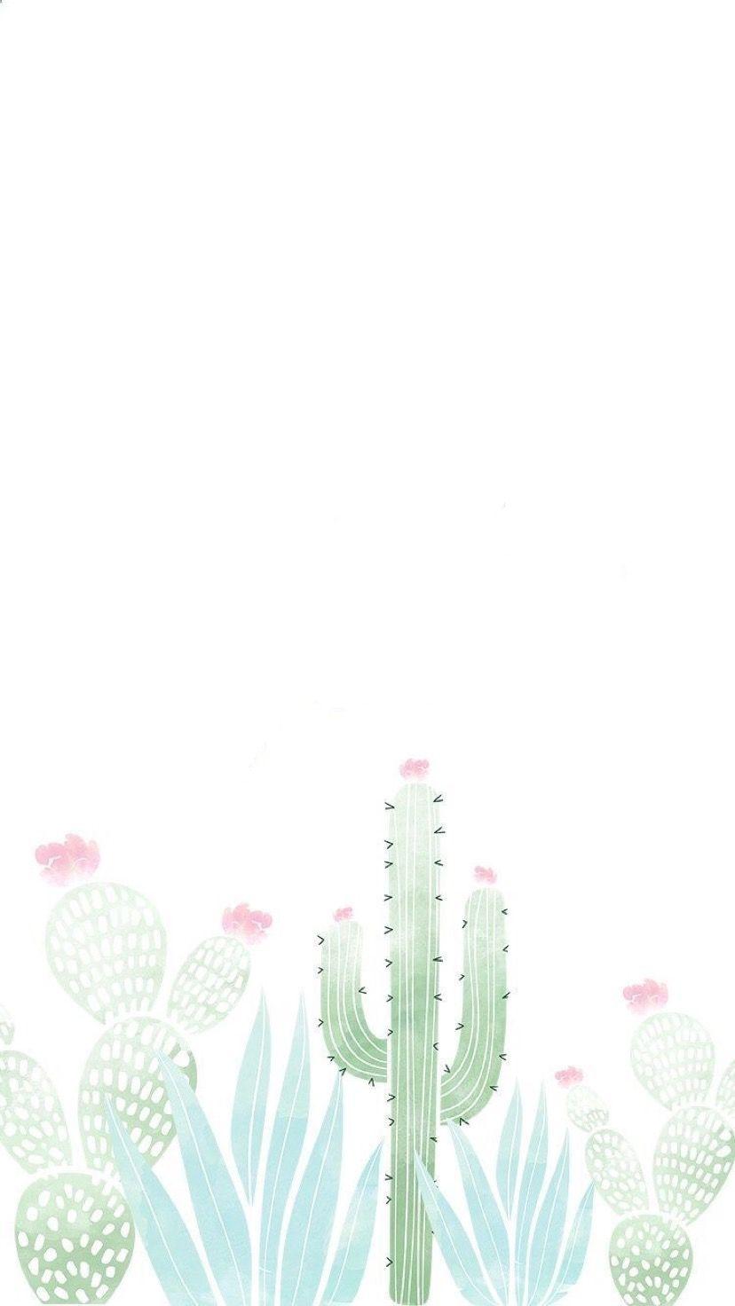 F Pour François Avec Cactus Baby Book En 2019 Screen Wallpaper