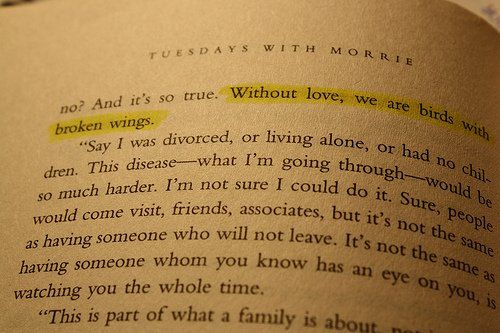 """""""Without love, we are birds with broken wings."""" --Tuesdays with Morrie"""