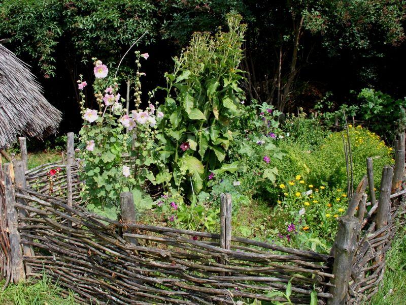 la permaculture un jardin potager sans entretien permaculture jardin potager et entretien. Black Bedroom Furniture Sets. Home Design Ideas