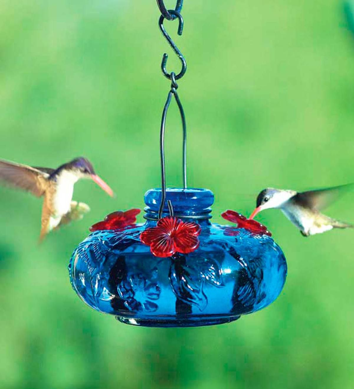 Bring your yard into bloom with this stunning Glass