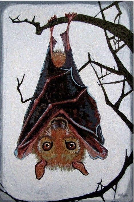 рисунок летучих мышей на дереве вверх ногами очень