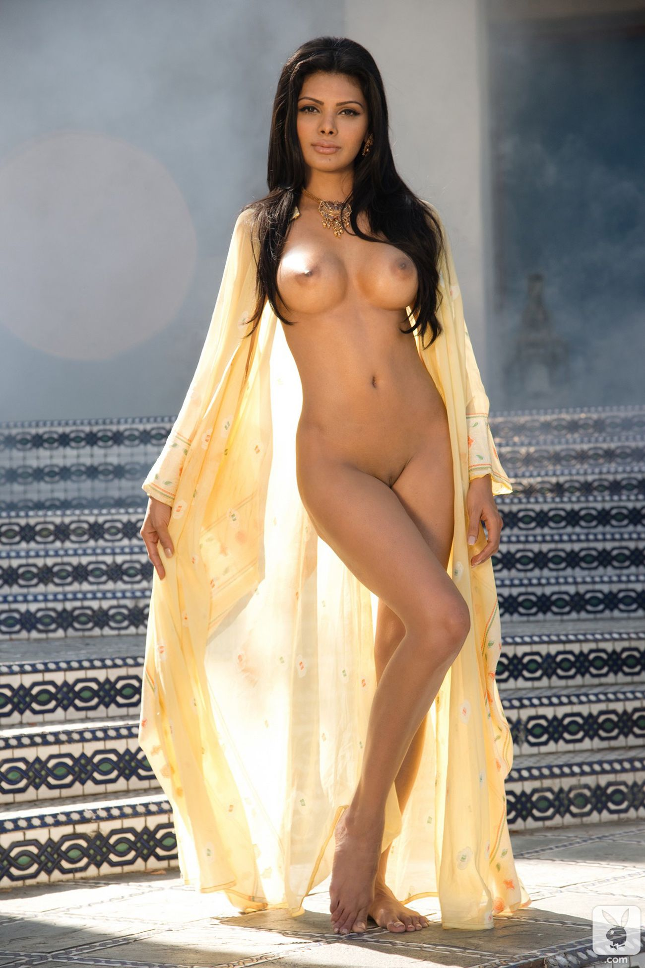 sherlyn chopra hot sex nude