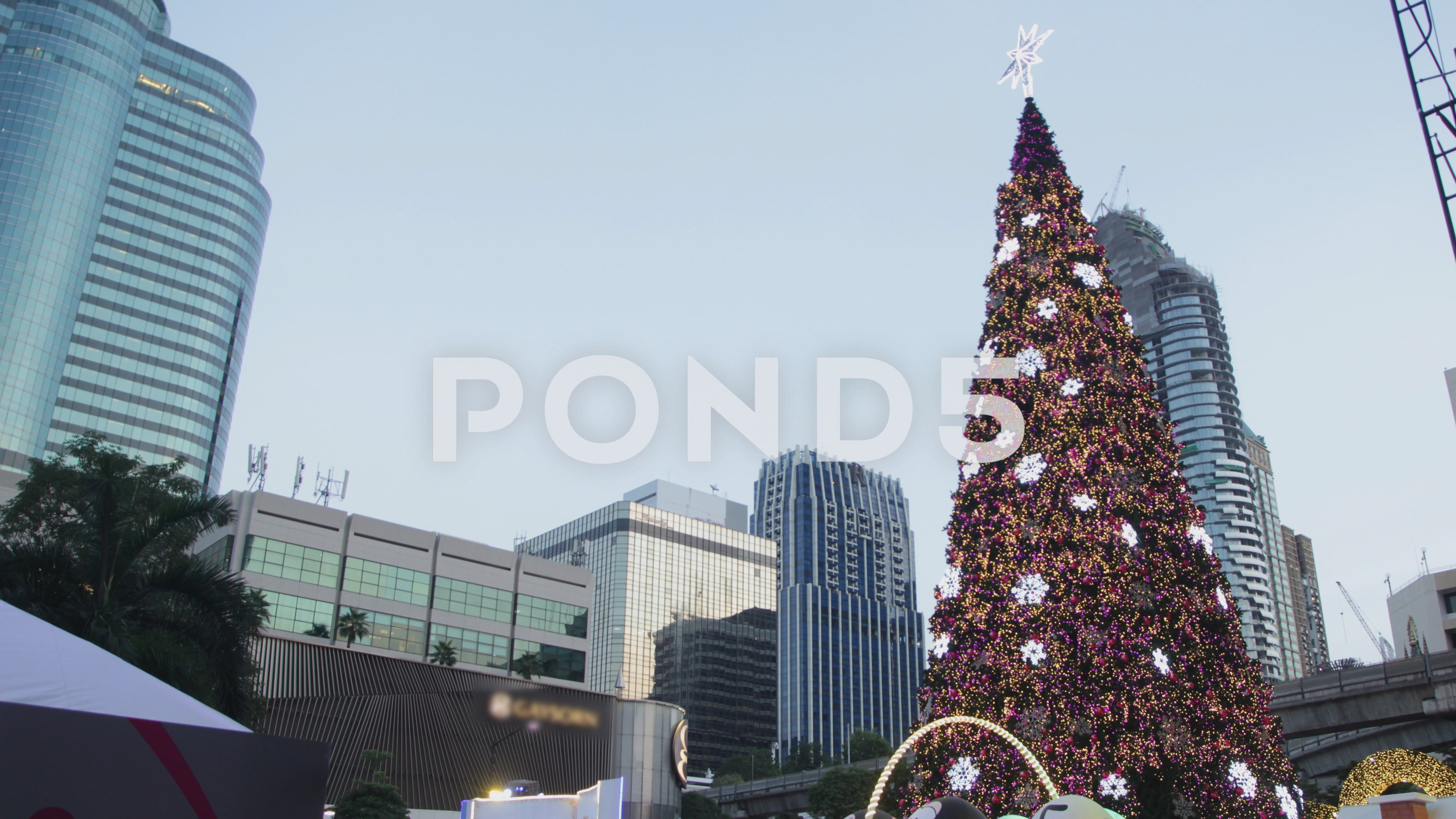 Christmas Tree In City Stock Footage Ad Tree Christmas City Footage Social Media Design Graphics City Stock Footage