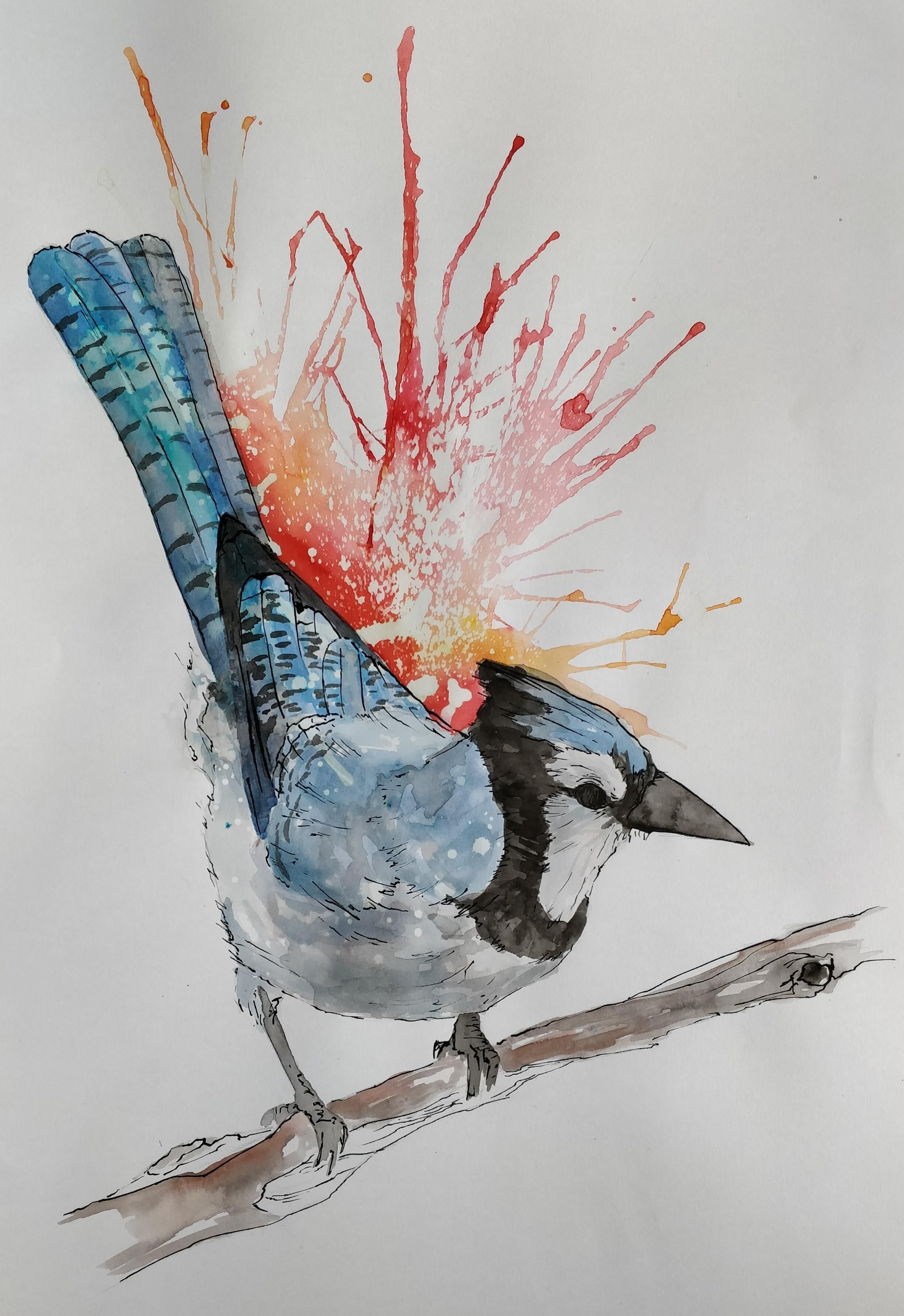 Blue Jay - Brusho Indian Ink and Bleach - 11.7 x 16.5