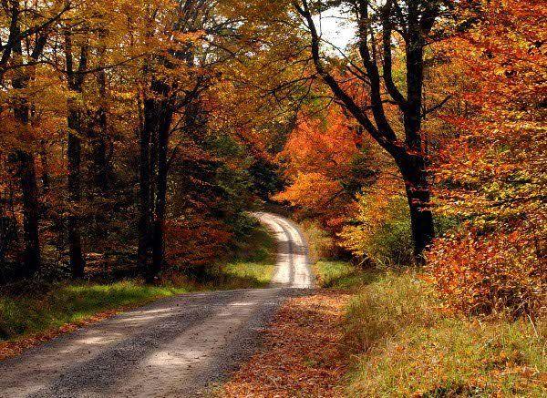 country road, take me home... ♪♪