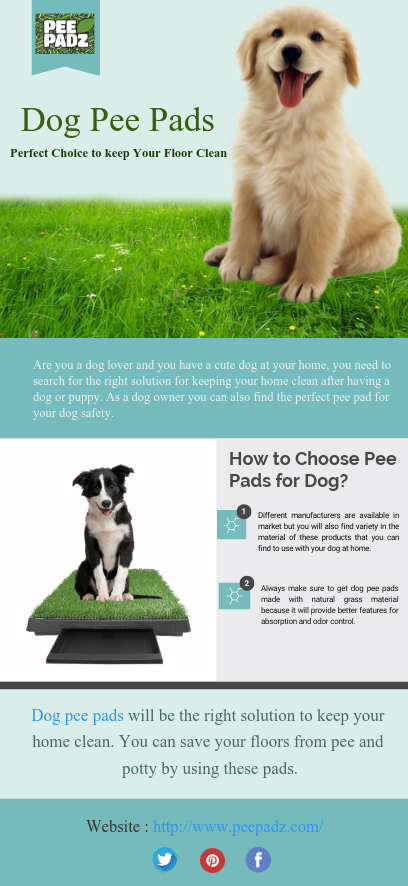 Are You A Dog Lover And You Have A Cute Dog At Your Home You Need To Search For The Right Solution For Keeping Your Dog Pee Pads Dog Pee Puppy