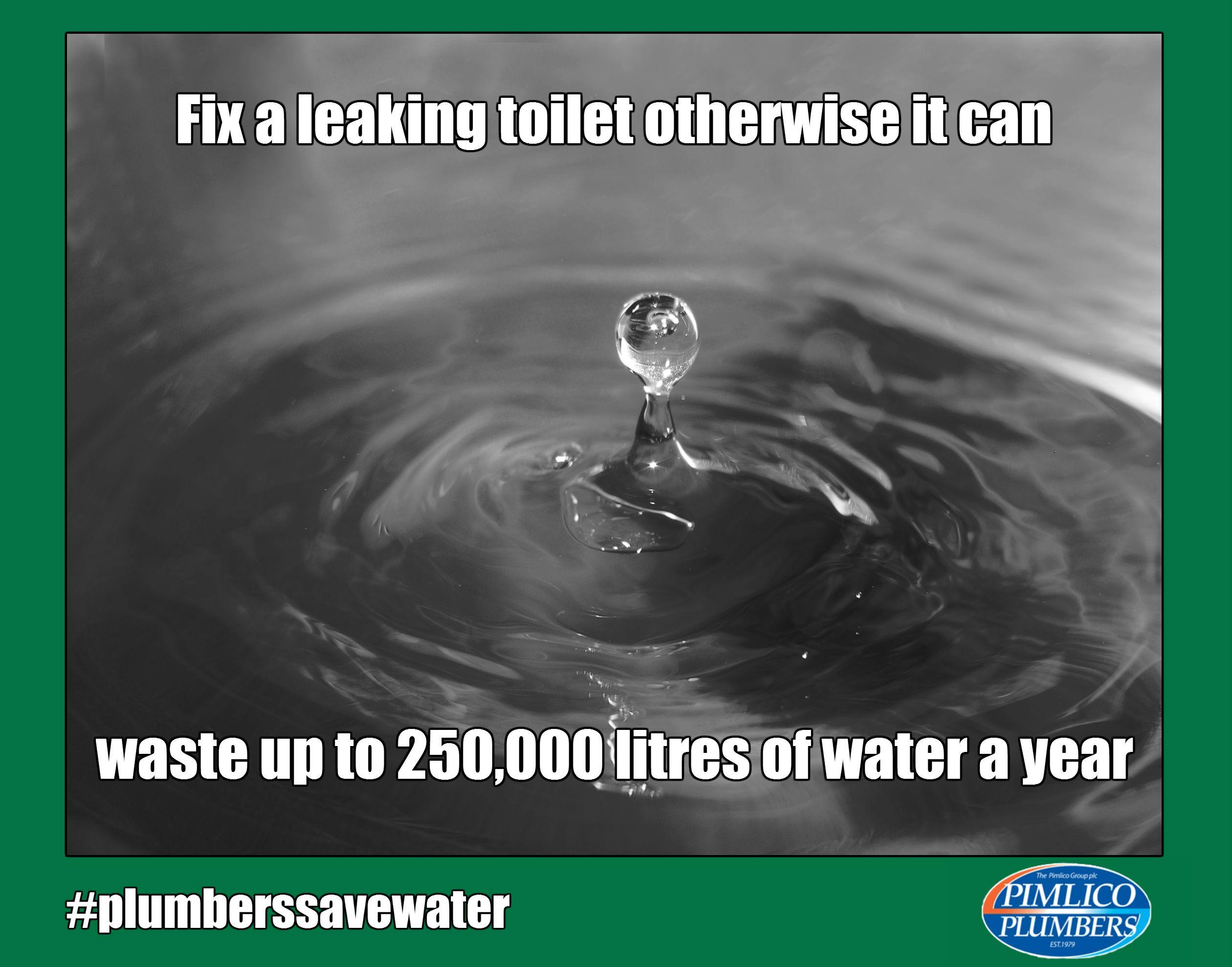 #watersaving #Leak #Toilet #Tips #Pimlico #Plumbers #Lambeth #Meme