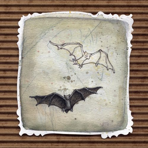 Bats by Leontine Greenberg