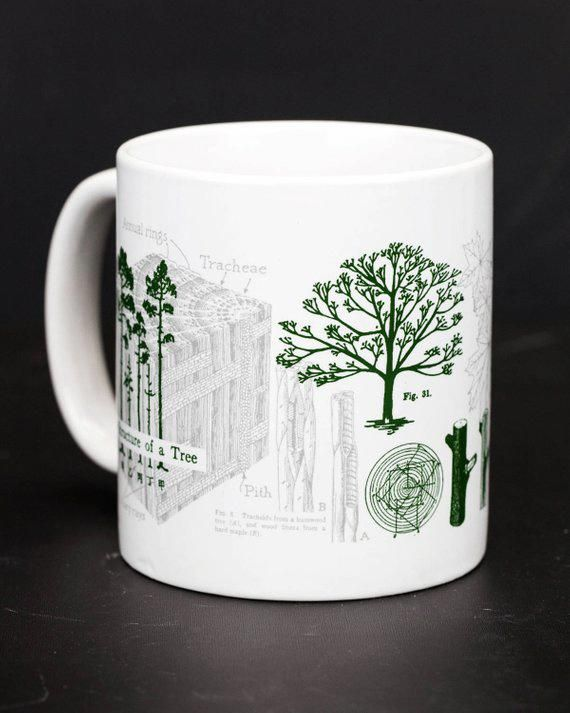 Trees Coffee Mug Large Pine Tree Mug Future Of Forestry Mug Tree Rings Giant Mug Tree Biology Mu Coffeemugs Coffee Mugs Coffee Mugs Mugs Mug Tree