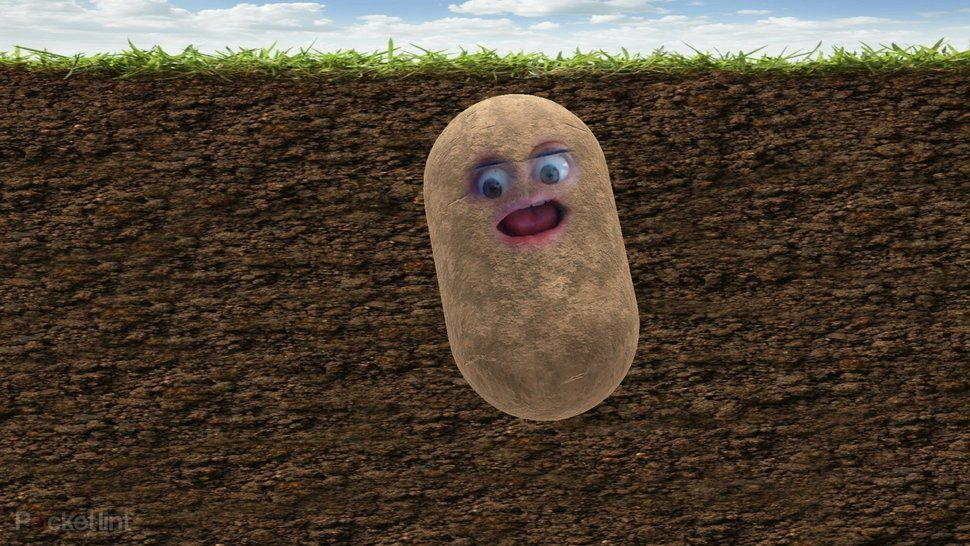 How To Turn Yourself Into A Potato And Other Things For Zoom Meetings Teams Calls And More In 2020 Potatoes Turn Ons Zoom Call