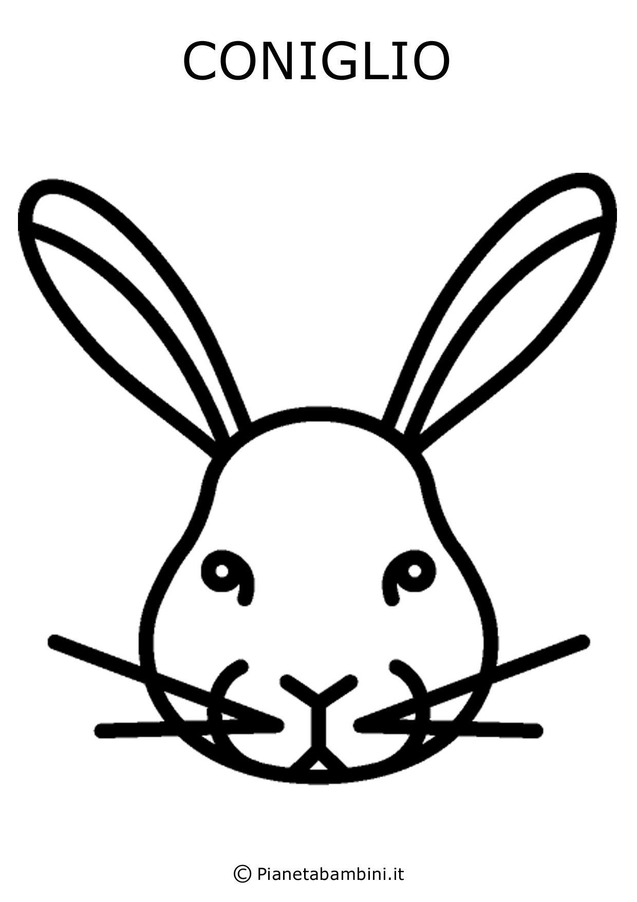 Facce Di 81 Animali Da Stampare Colorare E Ritagliare Animali Disegnare Animali Ritagli