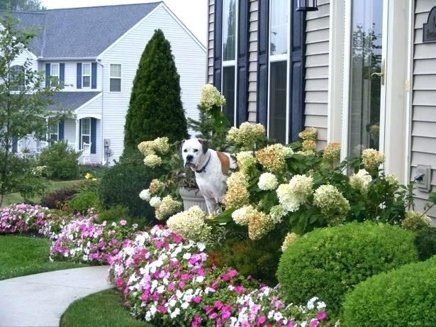 Small house front landscaping country side landscape design also rh in pinterest