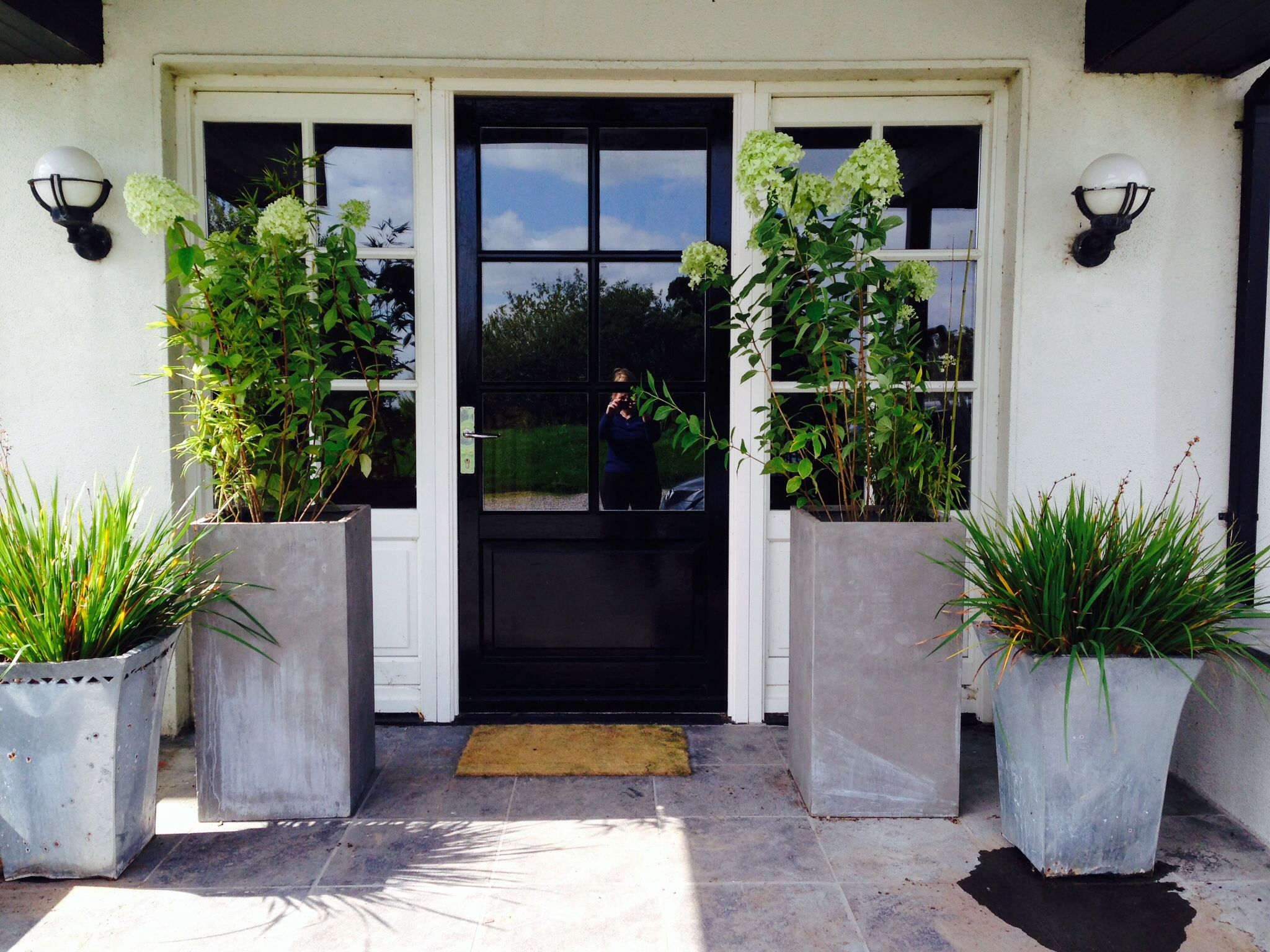 Hydrangea And Bamboo Planting At The Front Door Patio Doors