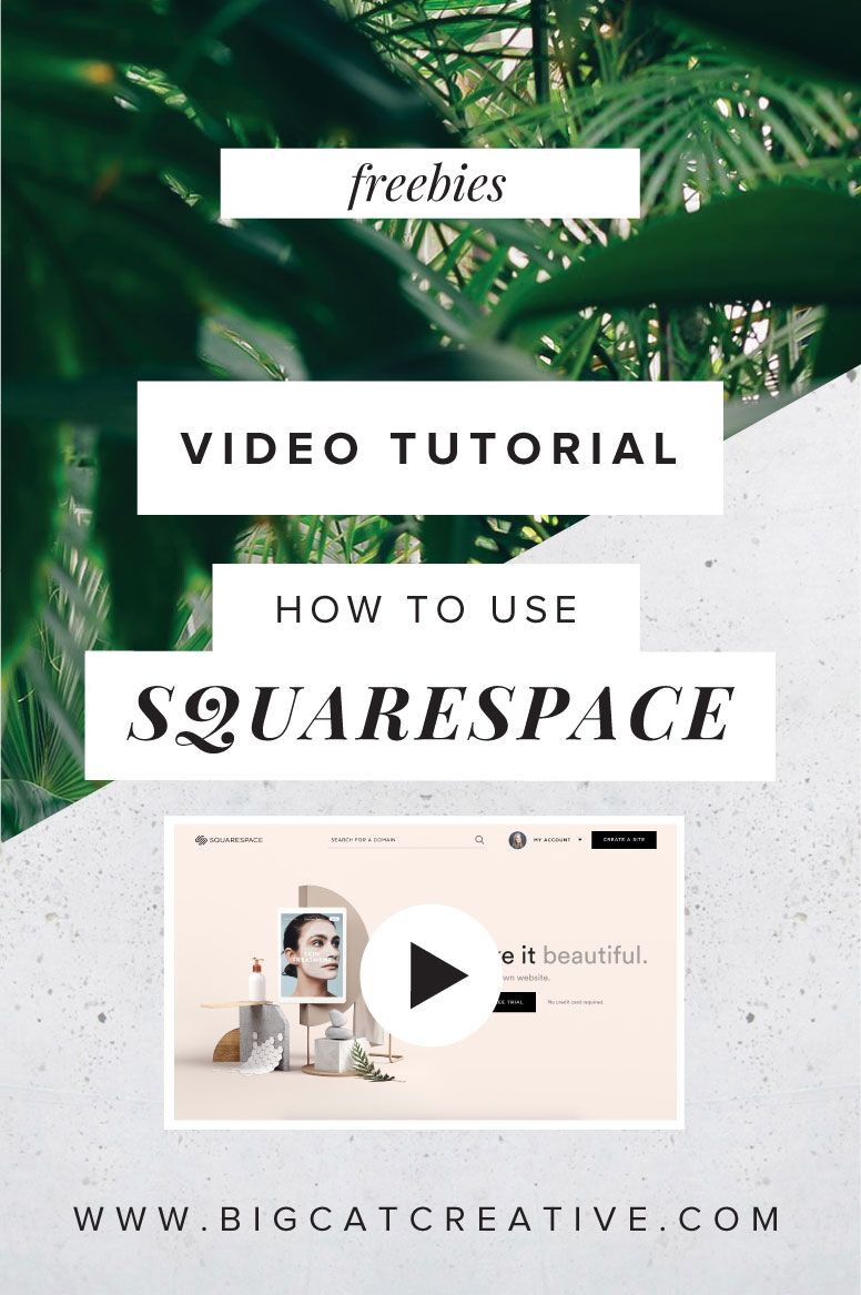 Free Video How To Use Squarespace The Basics Big Cat Creative
