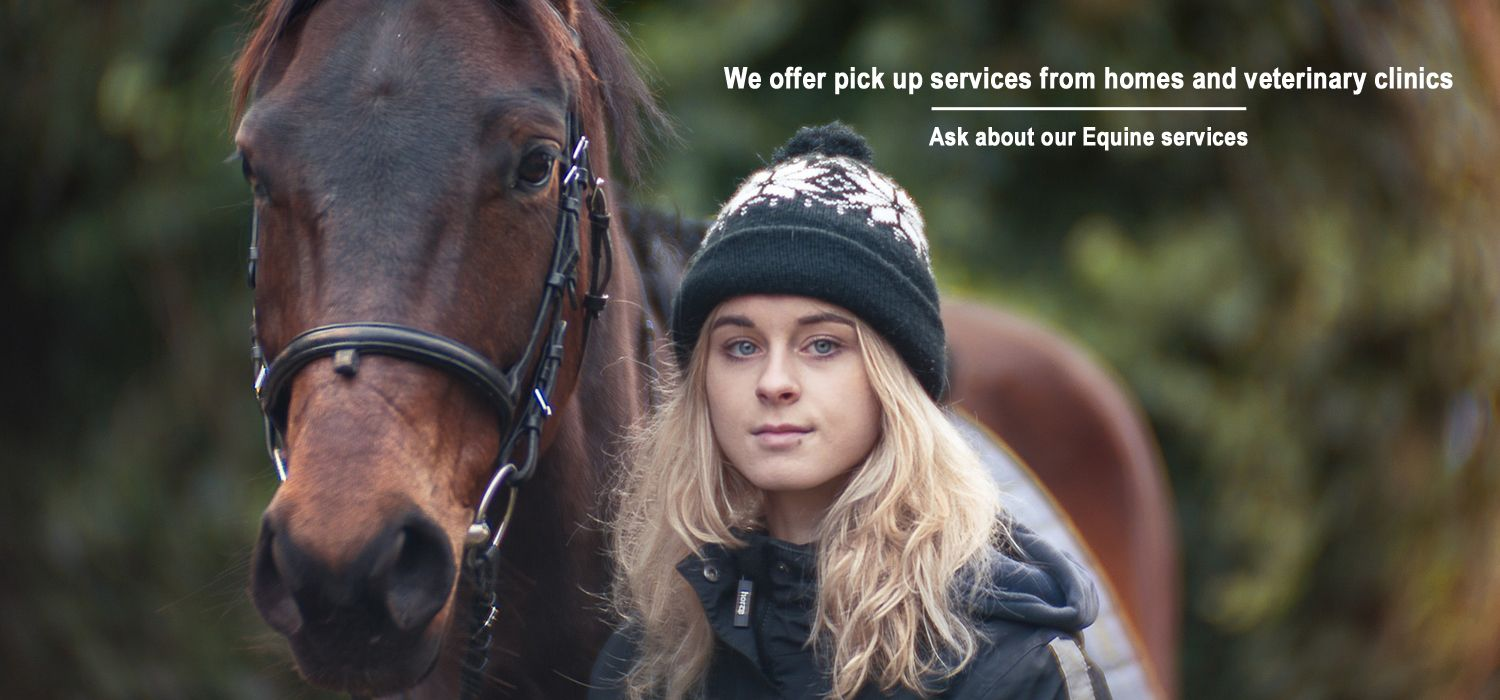 We offer pick up services from homes and veterinary