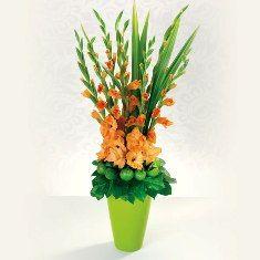 Make Your Own Floral Arrangement Using Gladiolus Church Flower Arrangements Flower Arrangements Gladiolus