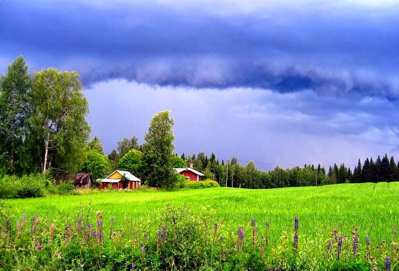 Finland Landscape Summer And Winter Session View Finland Summer Landscape Landscape