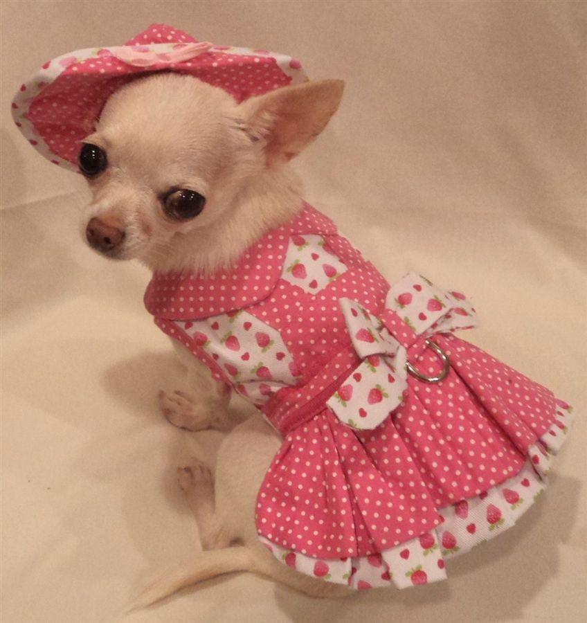 strawberry patch dog dress | female chihuahua dresses | Pinterest ...