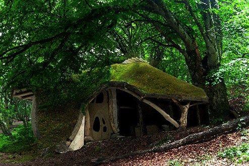 Ein Haus aus einem einzigen Baum - Design & Interieur - derStandard.at › Lifestyle