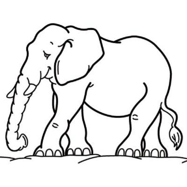 Malvorlagen mit Elefanten: Ausmalbilder mit Elefanten 2331 ...