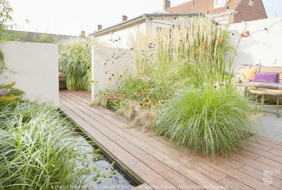 Terrace Garden Saleprice 14 Urban Garden Garden Design Landscape Projects