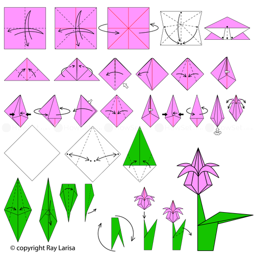 Image result for how to make origami tulip arts and crafts image result for how to make origami tulip mightylinksfo