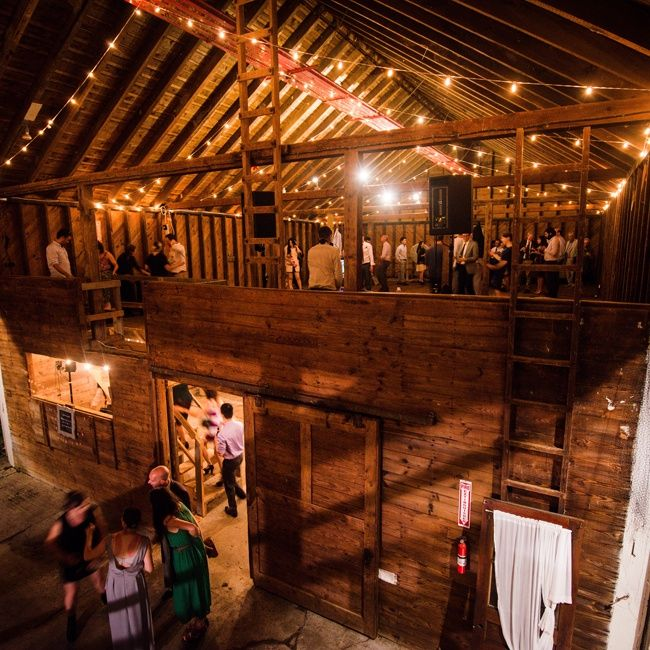 Amazing Reception Site Photo By Cly Creation Rufflands