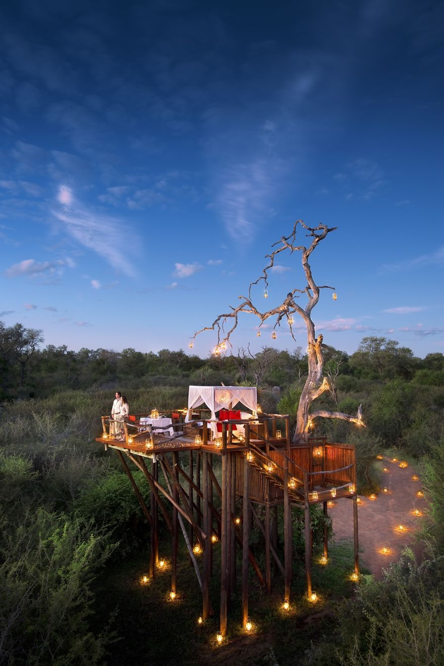 Interesting hotels chalkley treehouse south africa