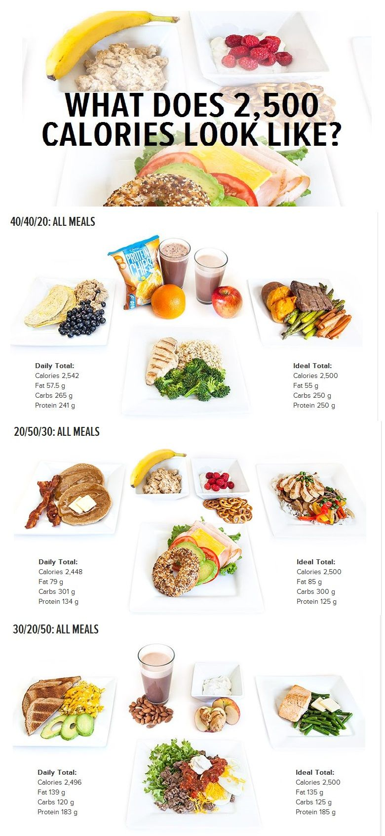 3000 calorie 300 grams of protein daily diet