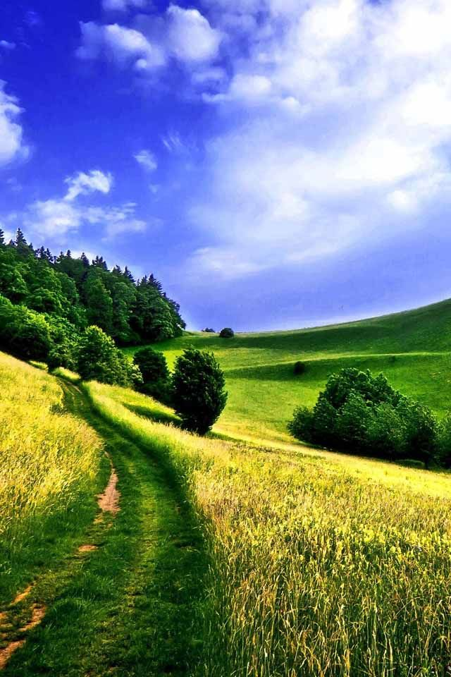 Landscape Spring Landscape Landscape Wallpaper Nature Desktop Wallpaper
