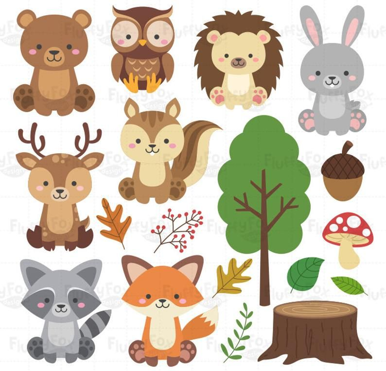Woodland Animals Clipart Forest Animal Clip Art Wild Cute Garden Fox Deer Squirrel Raccoon Rabbit Owl Bear Hedgehog Graphic Png Download In 2021 Forest Animals Animal Cutouts Animal Clipart