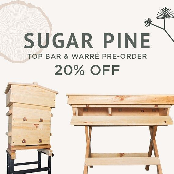 Charmant All Bee Thinking Top Bar And Warre Hives Are 20% Off Right Now For Pre