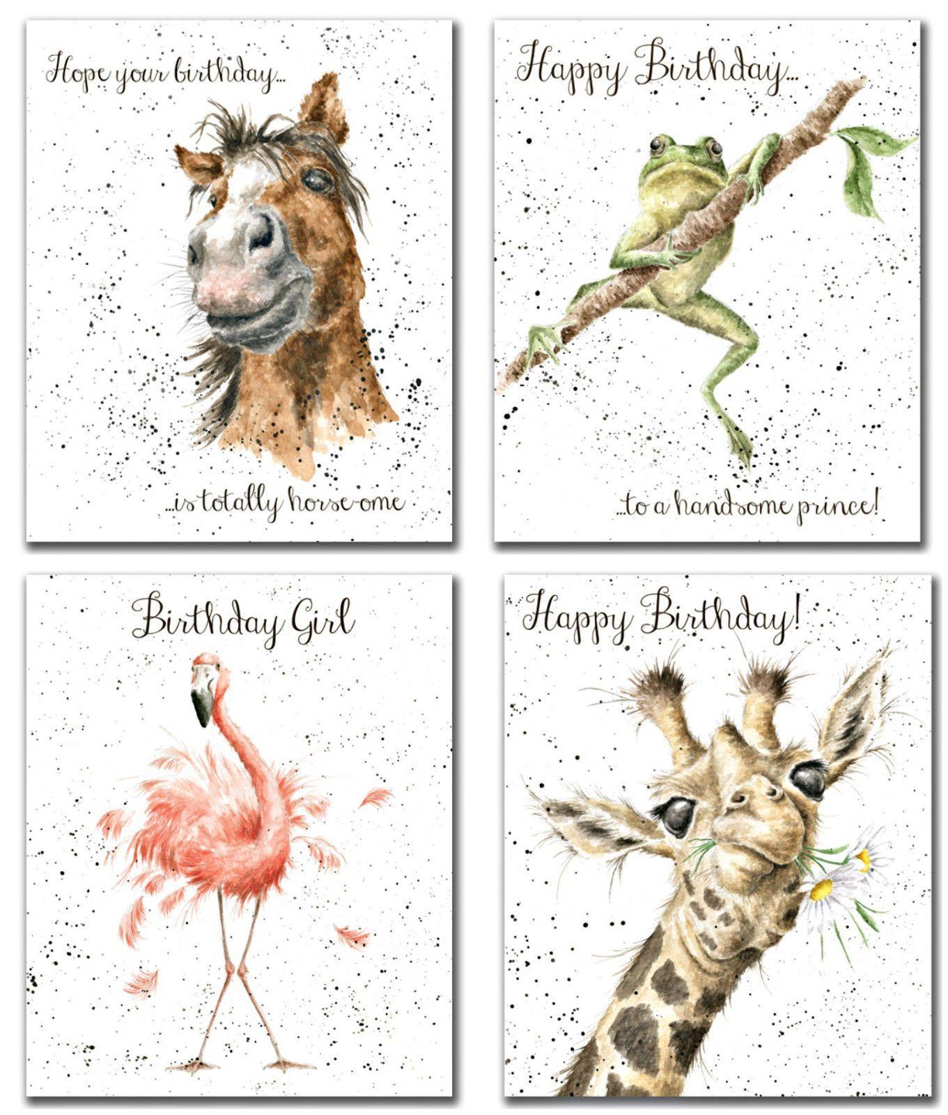 Animal Designs By Hannah Dale
