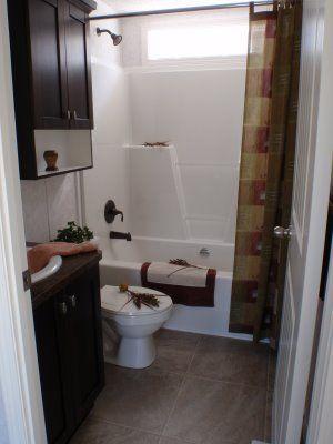Master Bathroom Shower Insert