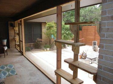 The Cat Carpenter Screen Porches