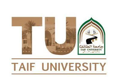 بدء القبول لبرامج الدراسات العليا للمنح الخارجية بجامعة الطائف Lettering University Tech Company Logos
