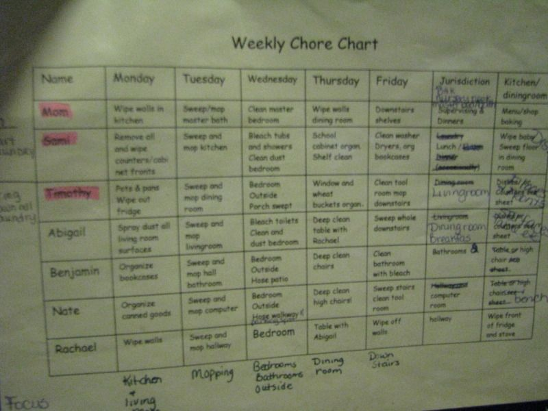 chore chore charts for large families