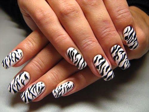 Beautiful Zebra Nail Art Designs For Girls 2013 Nails Pinterest